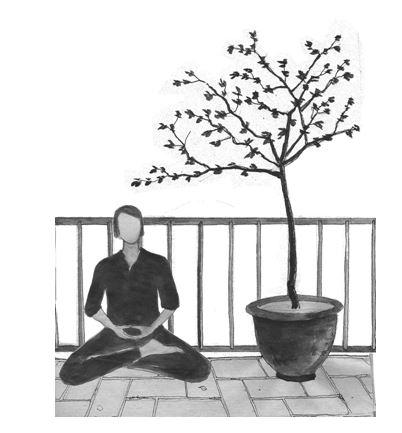 meditarcerezo